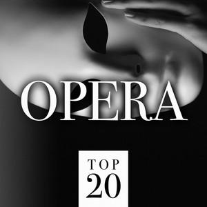 Top 20 Opera