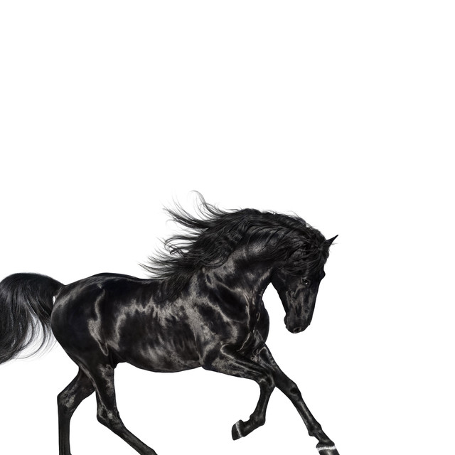 Old Town Road - Remix