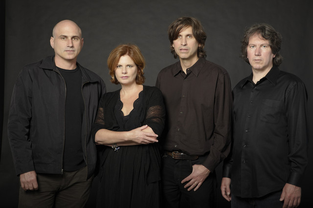 Cowboy Junkies Notes Falling Slow [DVD] cover