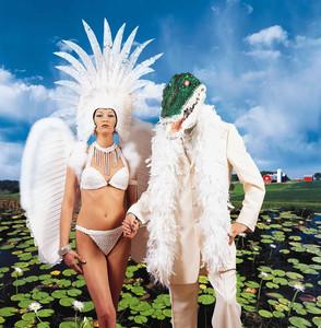 Alligator Farm album
