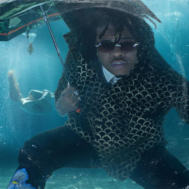 Album cover for Drip or Drown 2 by Gunna