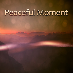 Peaceful Moment – Calm Down, Relax and Rest, Release Stress Albümü