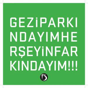 Her Şeyin Farkındayım (Gezi Parkındayım) Albümü