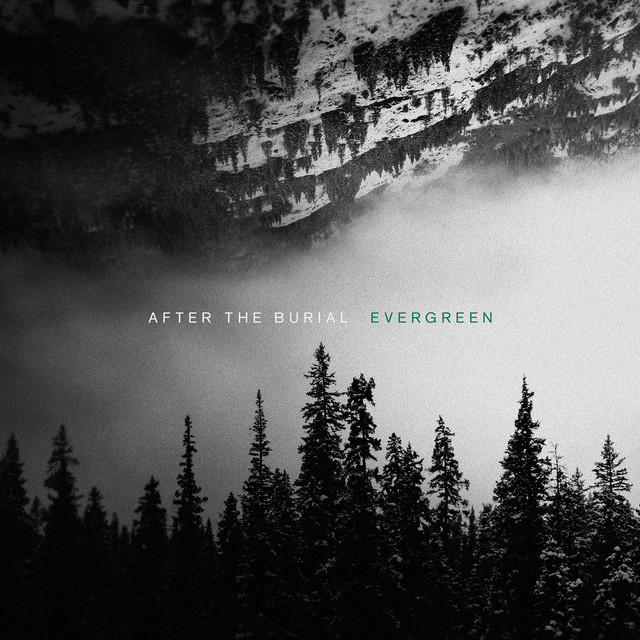 Album cover for Evergreen by After The Burial