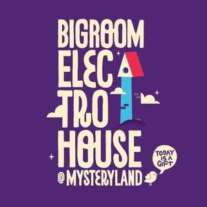Electro House @ Mysteryland 2013 Albümü