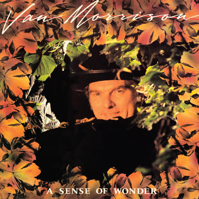 A Sense of Wonder Albumcover
