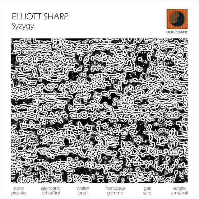 Картинки по запросу Elliott Sharp - Syzygy