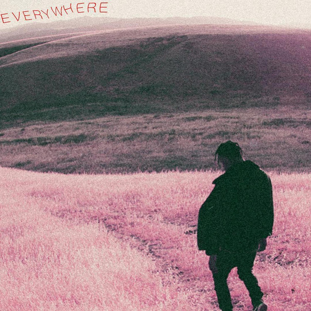 Album cover for Everywhere by Das, DJ Max Star