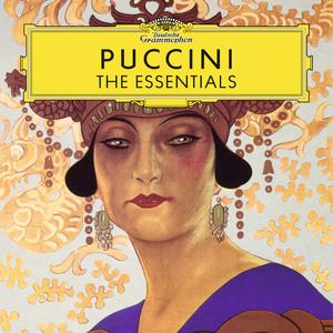 Giacomo Puccini, Sandor Konya, Chorus of the Maggio Musicale Fiorentino, Orchestra del Maggio Musicale Fiorentino, Antonino Votto Turandot / Act 3: Nessun dorma! cover