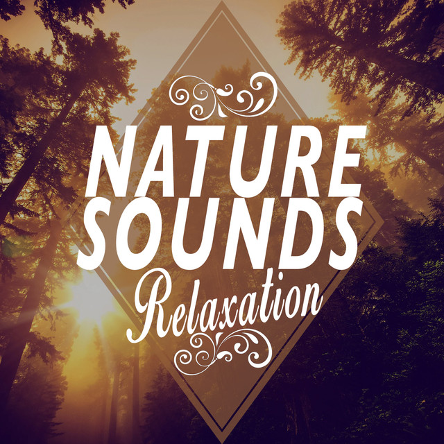 Nature Sounds Relaxation Albumcover