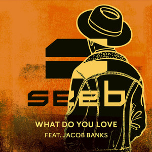 What Do You Love - Seeb