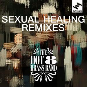 Sexual Healing (Remixes) album