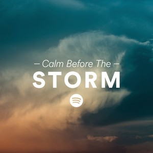 calm before the storm on spotify