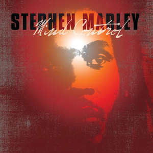 Stephen Marley The Traffic Jam - Main cover