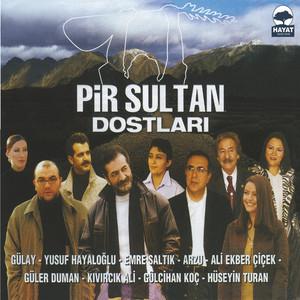Pir Sultan Abdal Dostları Albümü