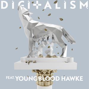 Copertina di Digitalism - Wolves