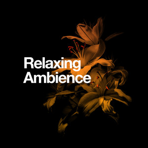 Relaxing Ambiance Albümü