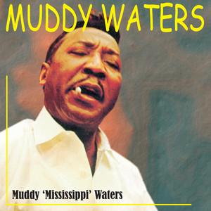 Muddy 'Mississippi' Waters Live album
