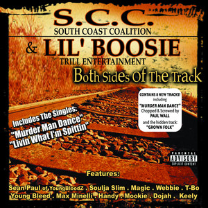 Both Sides of the Track album