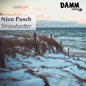 Nico Pusch