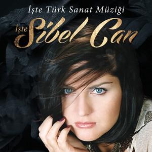 İşte Türk Sanat Müziği Albümü