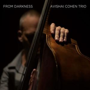 Avishai Cohen Trio, Beyond på Spotify