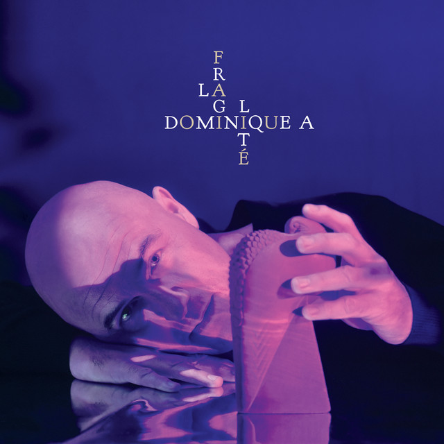 Album cover for La fragilité by Dominique A