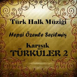 Karışık Türküler, Vol. 2 (Hepsi Özenle Seçilmiş Türk Halk Müziği)