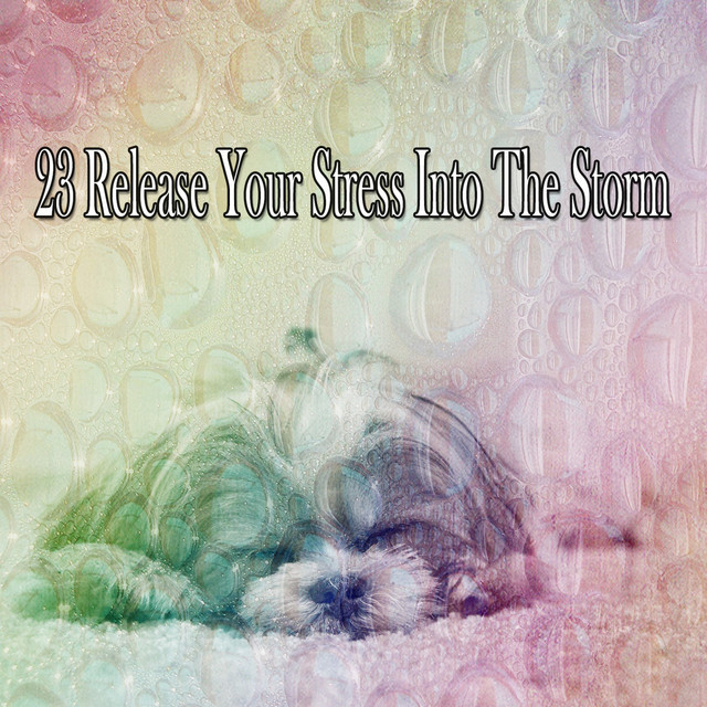 23 Release Your Stress Into The Storm