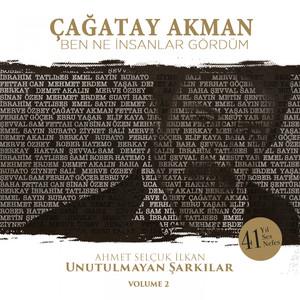 Ben Ne İnsanlar Gördüm (Ahmet Selçuk İlkan Unutulmayan Şarkılar, Vol. 2) Albümü
