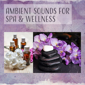 Ambient Sounds for Spa & Wellness – Best Ambient New Age Music, Spa Relaxation, Beautiful Time in Wellness, Calm Music Albümü
