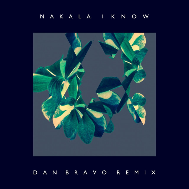 I Know (Dan Bravo Remix)