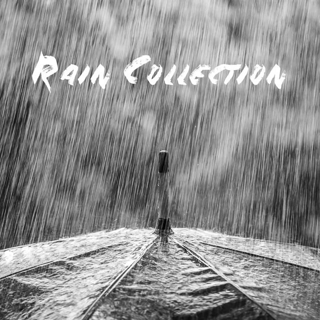 Rain Collection Albumcover