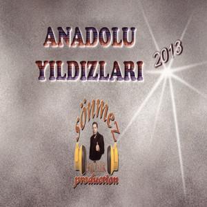 Anadolu Yıldızları (2013) Albümü