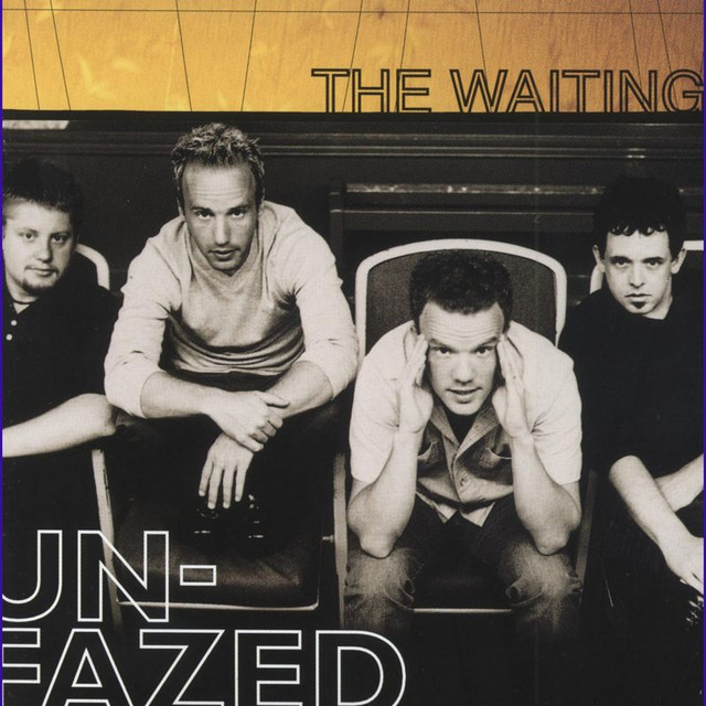 Unfazed cover