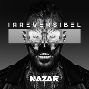 Irreversibel album