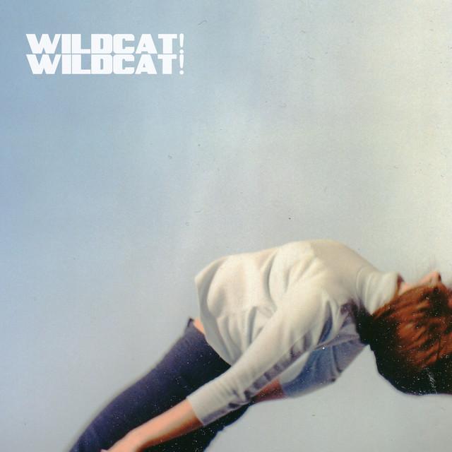 Wildcat! Wildcat!