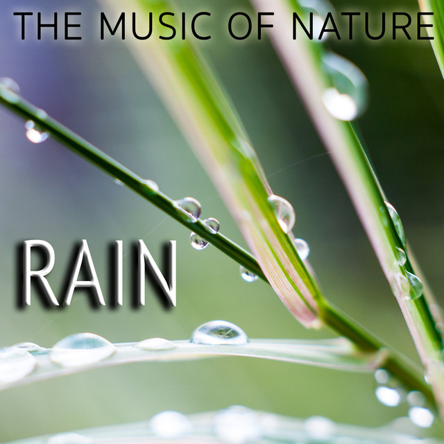The Music of Nature: Rain Albumcover