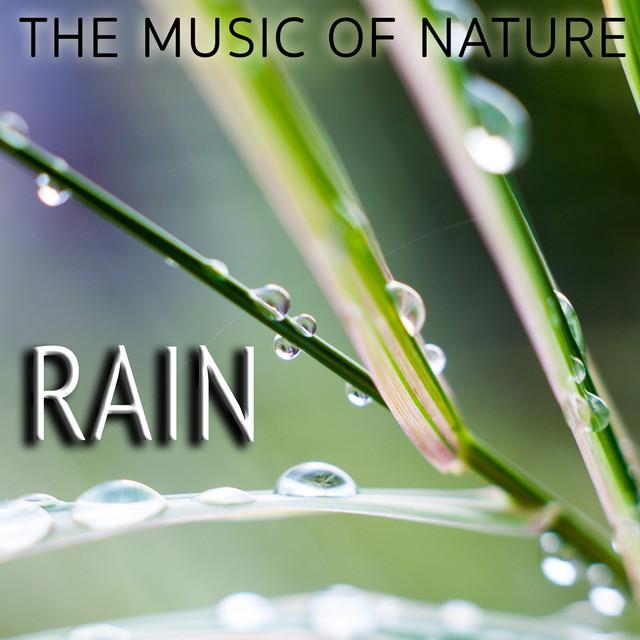 The Music of Nature: Rain Albumcover