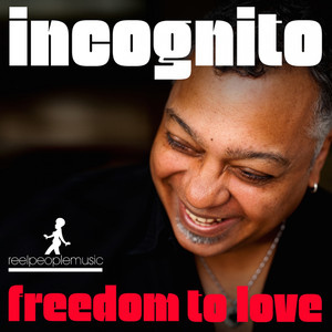 Freedom to Love (Remixes) album