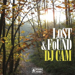 Lost & Found Compilation Albumcover
