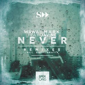 Never Ft. Javine ( Remixes )