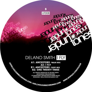 Copertina di Delano Smith - I Fly - Original Mix