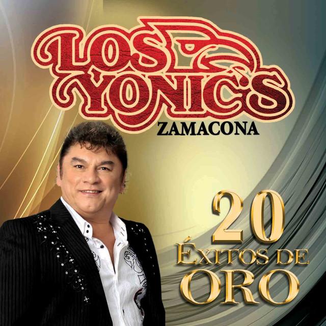 Album cover for 20 Éxitos de Oro by Los Yonic's