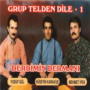 Grup Telden Dile, Vol. 1 (Derdimin Dermanı)