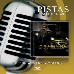 Pistas No Fue en Vano Albumcover