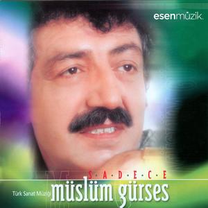 Sadece (Türk Sanat Müziği) Albümü