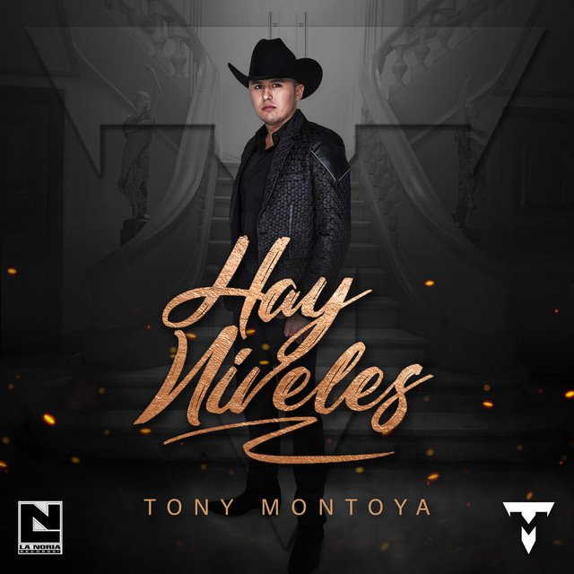 Album cover for Hay Niveles by Tony Montoya