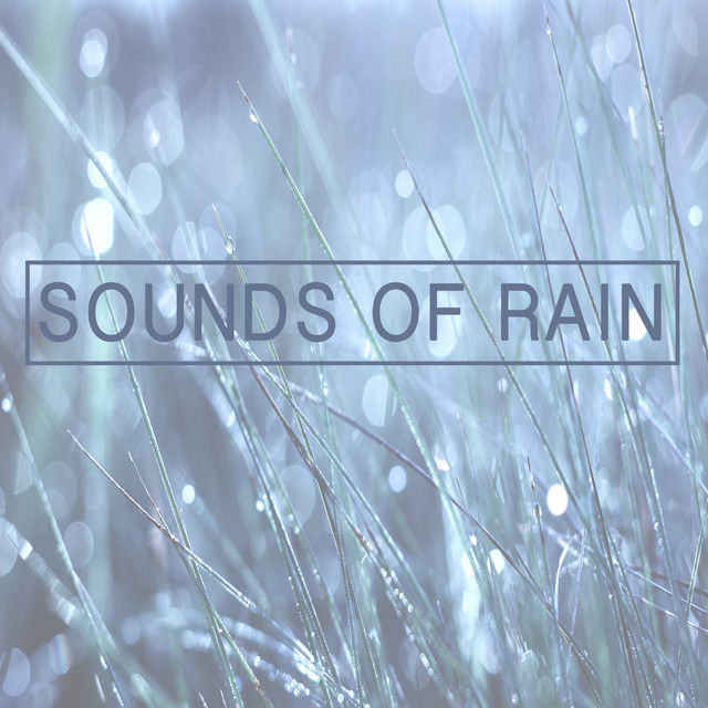 Sounds of Rain