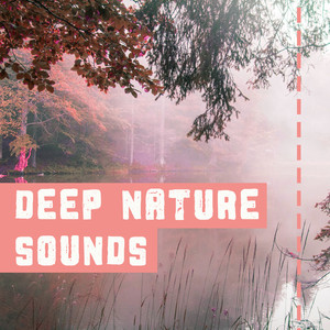 Deep Nature Sounds – New Age Music for Deep Relaxation, Inner Peace, Magic Nature Music Albümü